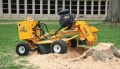 Rental store for STUMP GRINDER-35HP CARLTON in Stevens PA